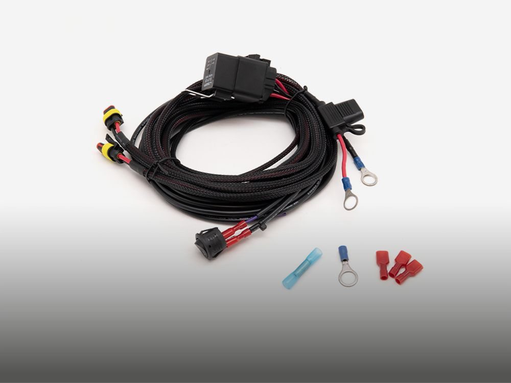 Two-Lamp Wiring Kit (Low Power, 12V)